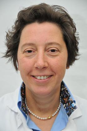 Prof. dr. Liesbet Mesotten